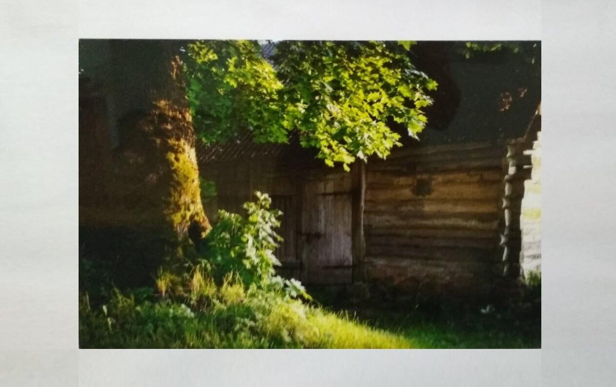 Фотовыставка Виктора Щербакова